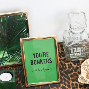 _-greeting-card-youre-bonkers